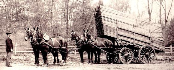 horse drawn lumber wagon