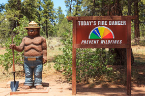 smokey the bear prevent wildfires