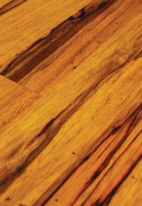 Rehmeyer Extreme Custom Flooring: Pioneer Ofram